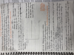 ECON 101 - Class Notes - Week 9