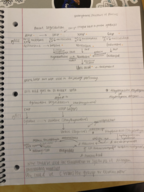 UTC - CHEM 4510 - Class Notes - Week 13