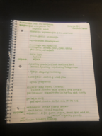 Utah State University - NDFS 3600 - Class Notes - Week 12