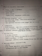 MGMT - Class Notes - Week 6