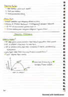 NYU - CAMS-UA - Class Notes - Week 12