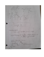 CHEM 341 - Class Notes - Week 6