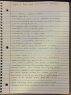 ECON 10223 - Class Notes - Week 12