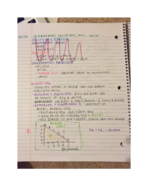ECON 1123 - Class Notes - Week 8