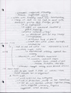 HIS 315 - Class Notes