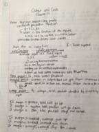 ECON 1010 - Class Notes - Week 6