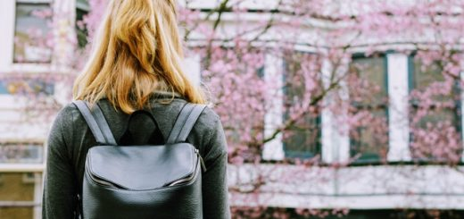 pros and cons of going to a big university