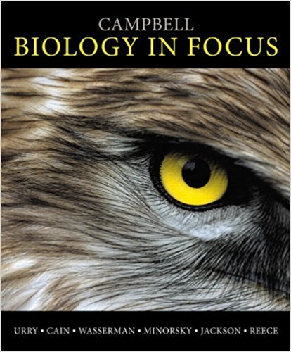 Campbell Biology in Focus - Standalone book | 1st Edition | ISBN: 9780321813800 | Authors: Lisa A. Urry, Michael L. Cain, Steven A. Wasserman, Peter V. Minorsky, Robert B. Jackson, Jane B. Reece